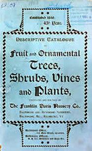 Franklin Davis Nursery Catalog 1893