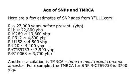 Table: Age of SNPs